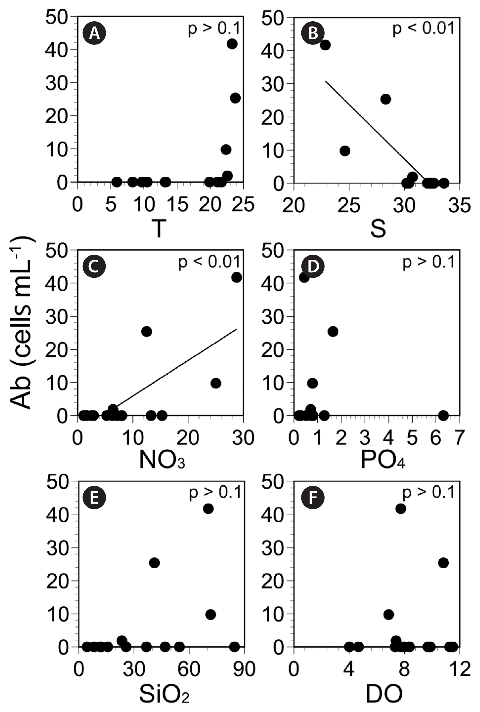 Spatial and seasonal distributions of the phototrophic
